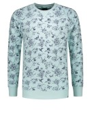 Dstrezzed Trui Turquoise Print Normale fit