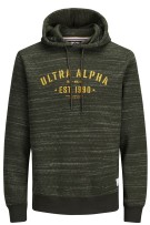 Jack & Jones Plus Size hoody sweater groen