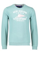 New Zealand Trui Groen Effen Print Normale fit